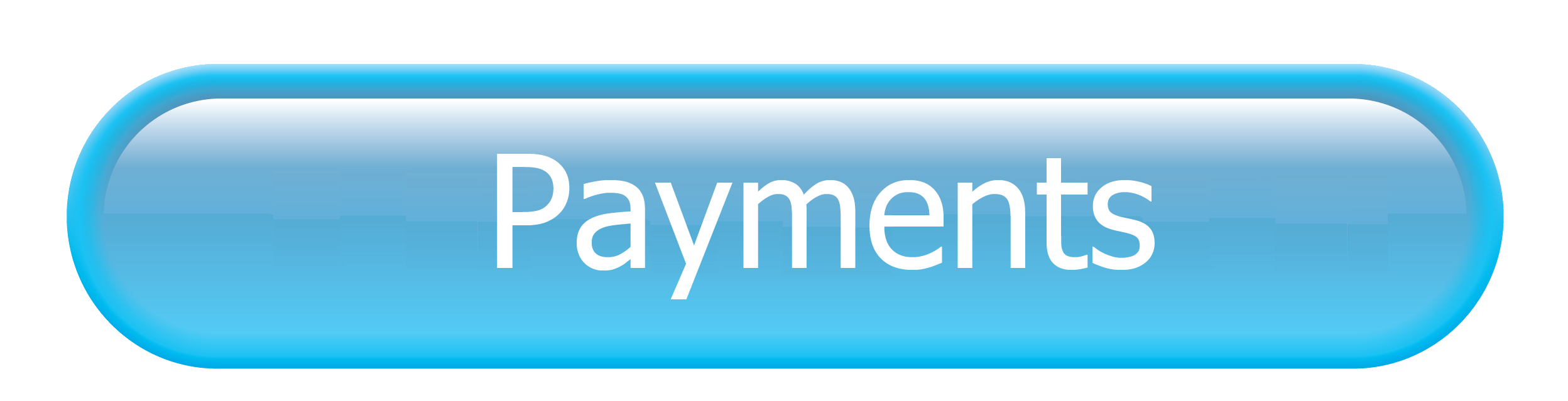 Go to Payment Button