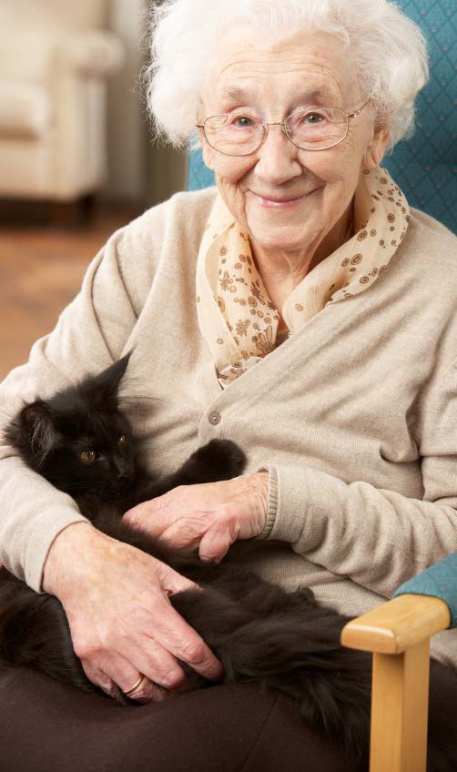 An Older Woman Sitting in a Chair with a Cat